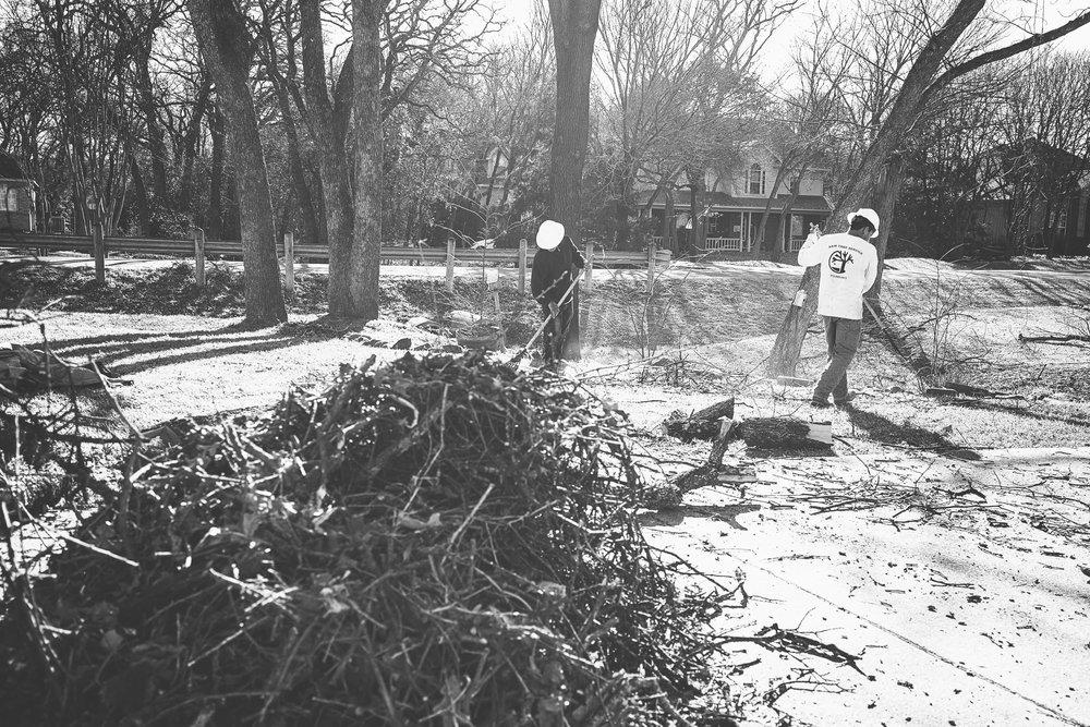 Tree Trim Service in keller Texas (7 of 49).jpg