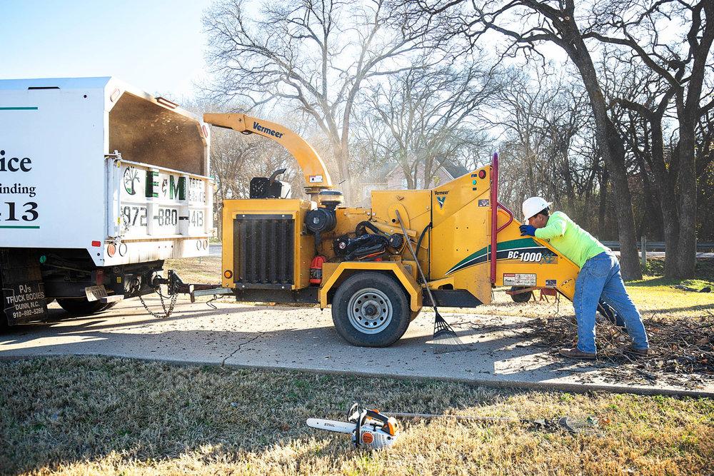Tree Trim Service in keller Texas (27 of 49).jpg