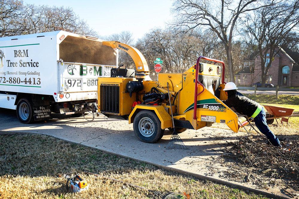 Tree Trim Service in keller Texas (29 of 49).jpg