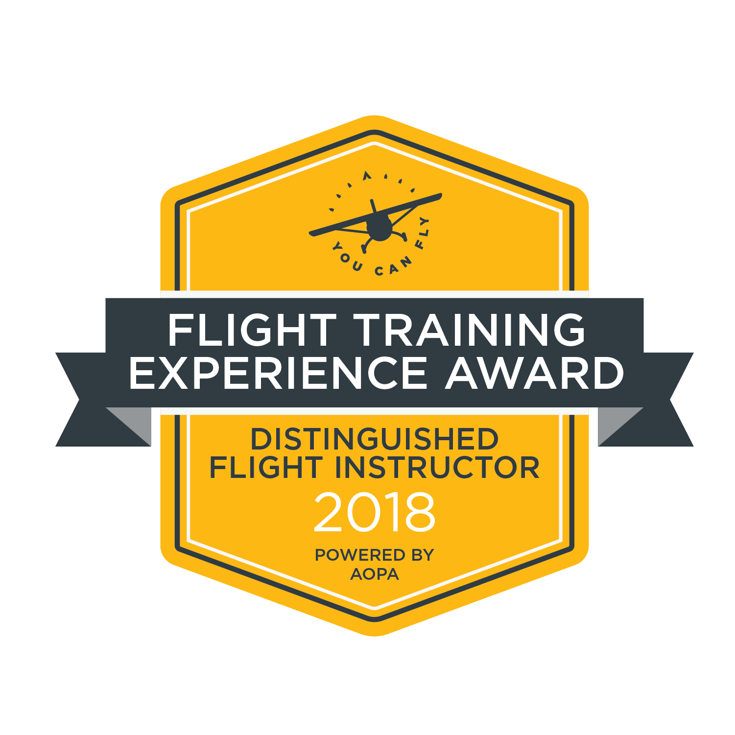 AOPA's 2018 Flight Training Experience Survey