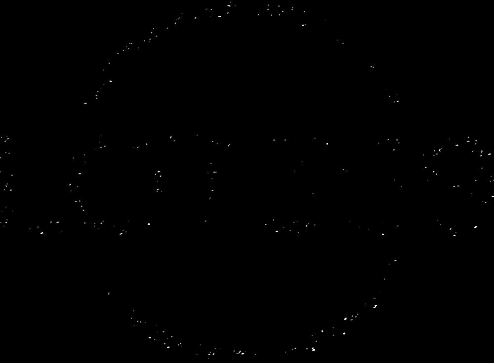 LOT369 Logo Transparent.png