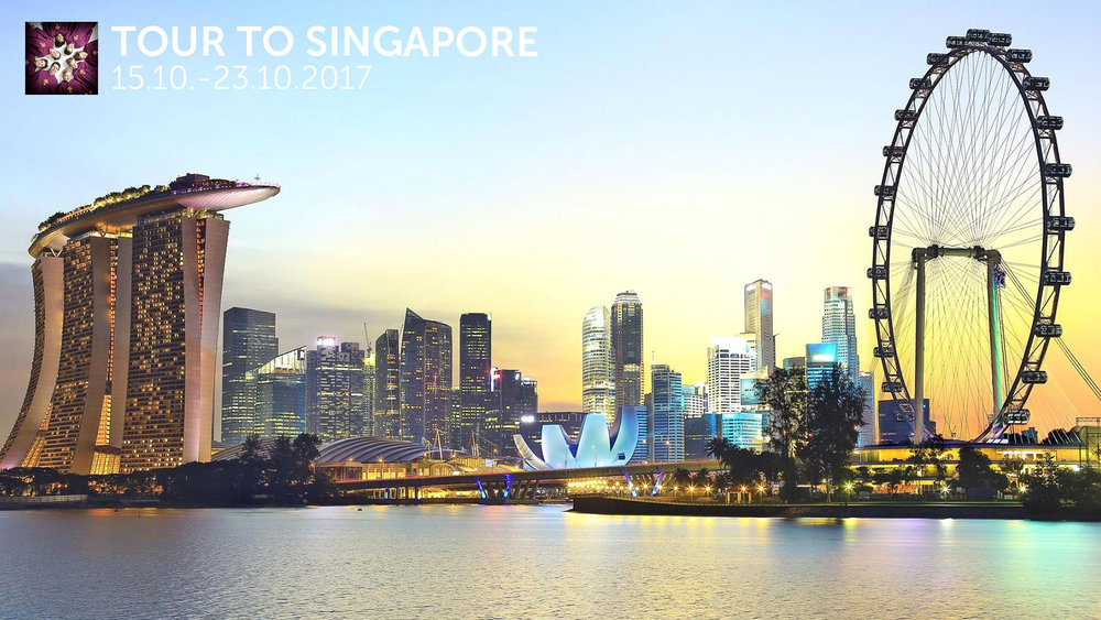 SINGAPORE 2017 -