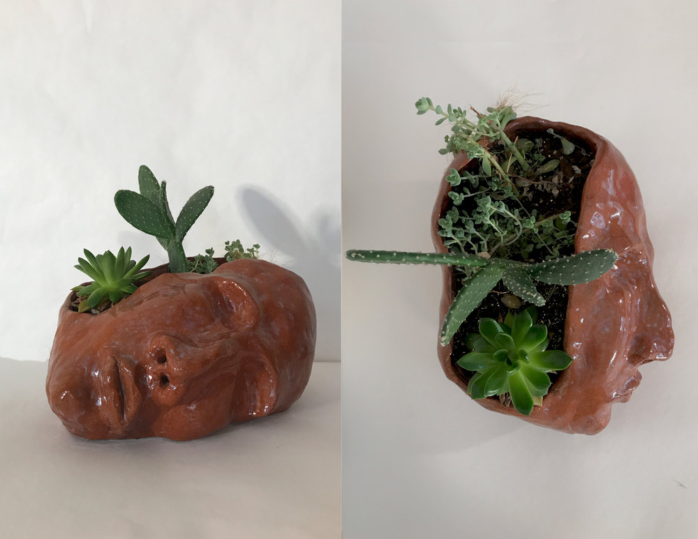 Planter Thoughts