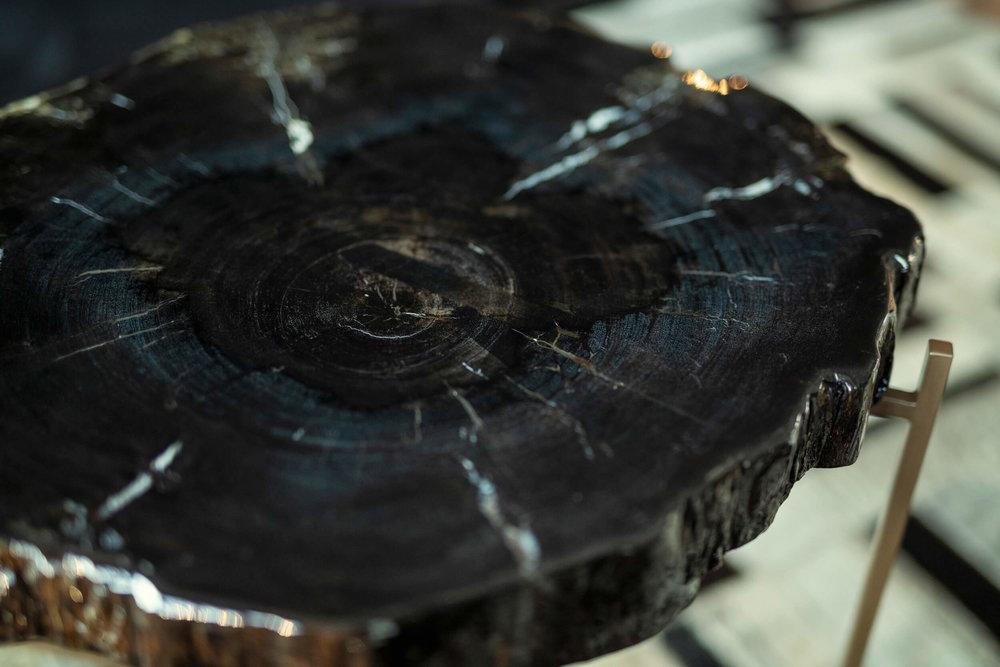 Versteend hout tafels -