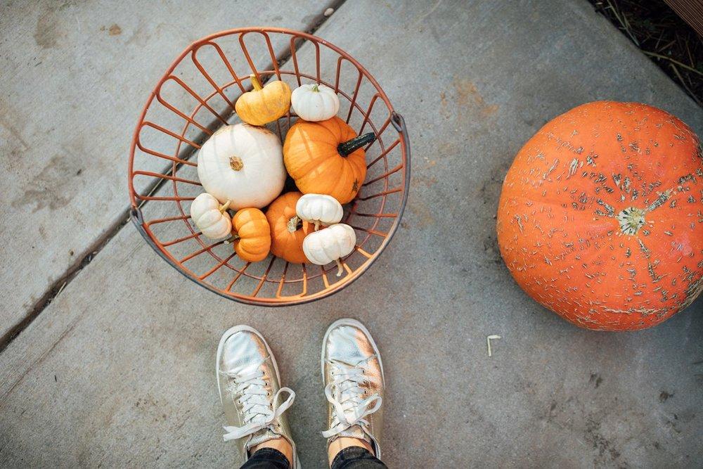 walkinlove_familytime_pumpkinpicking_lancasterblogger-5.jpg