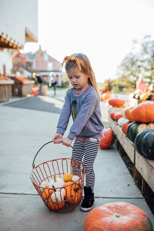 walkinlove_familytime_pumpkinpicking_lancasterblogger-3.jpg