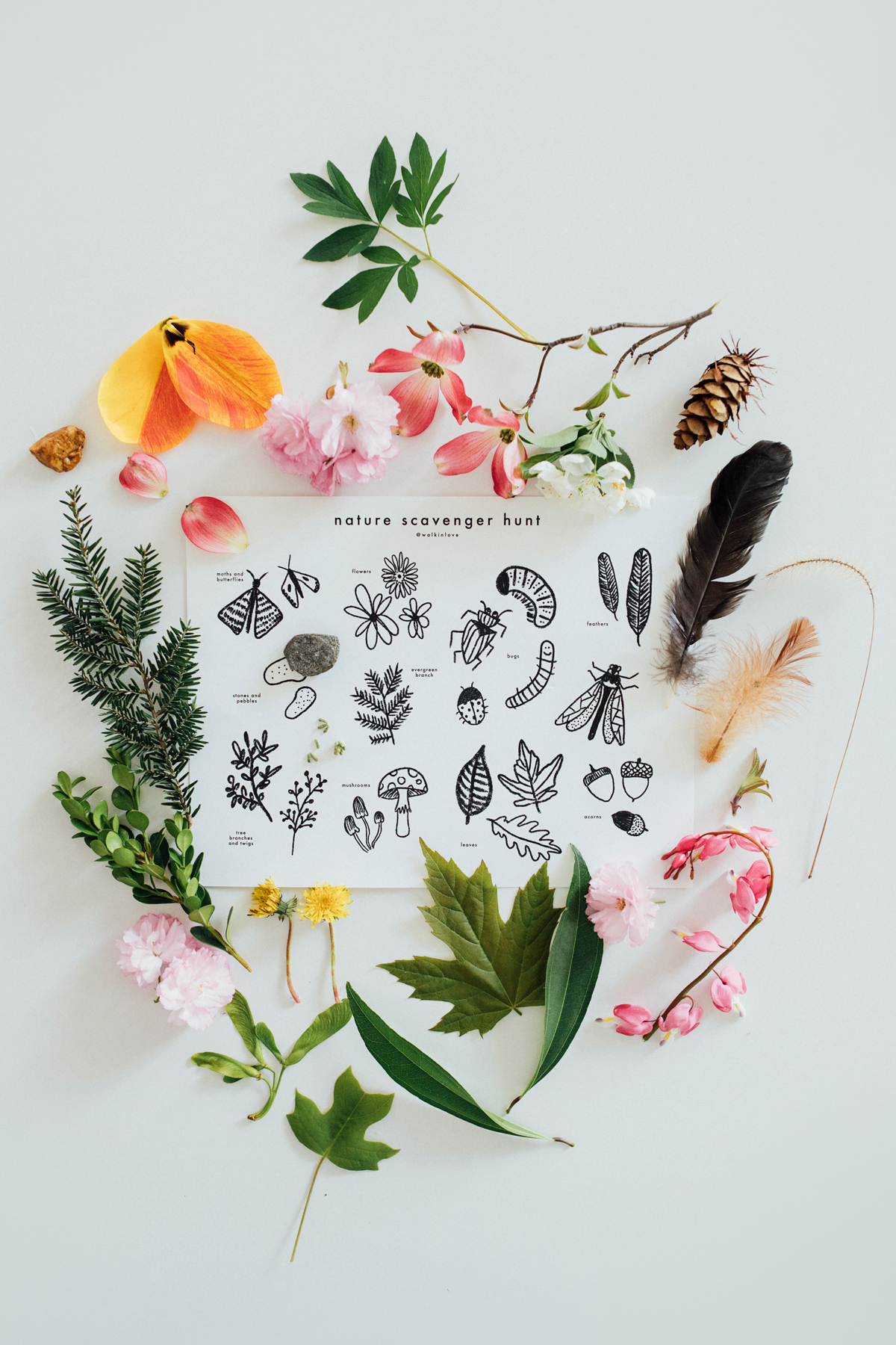 photo about Printable Nature Scavenger Hunt known as Mother nature Scavenger Hunt Totally free Printable wander inside take pleasure in.