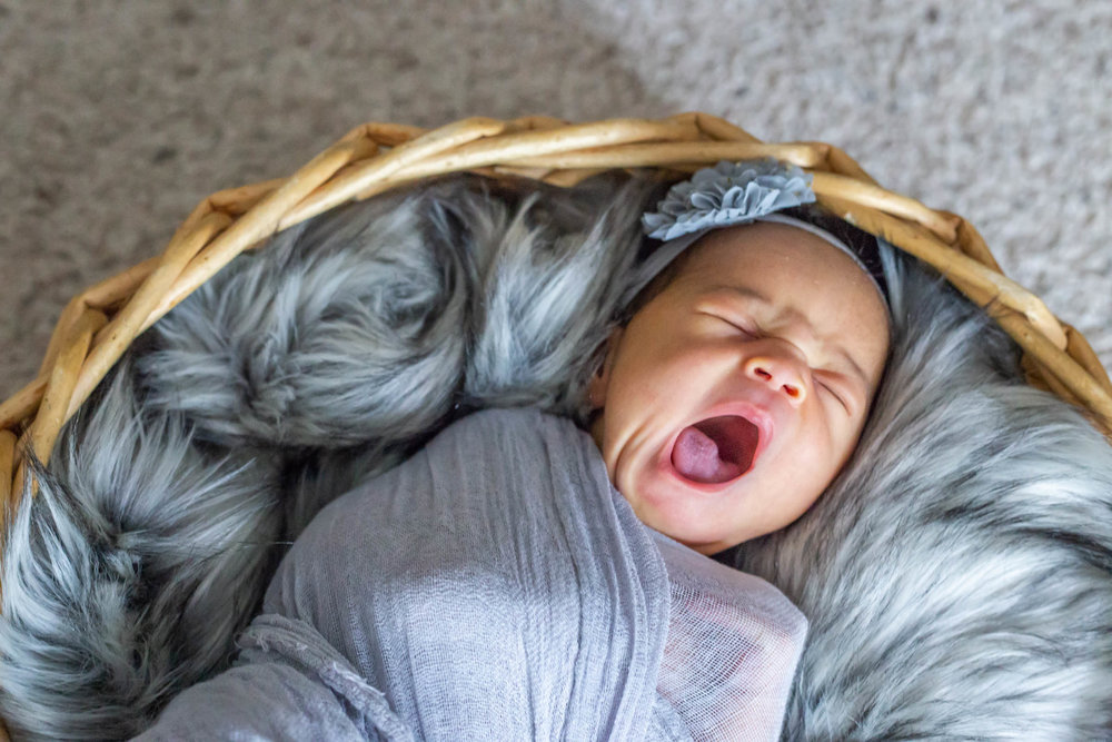 Baby yawning while sleeping in a basket with grey fur filling