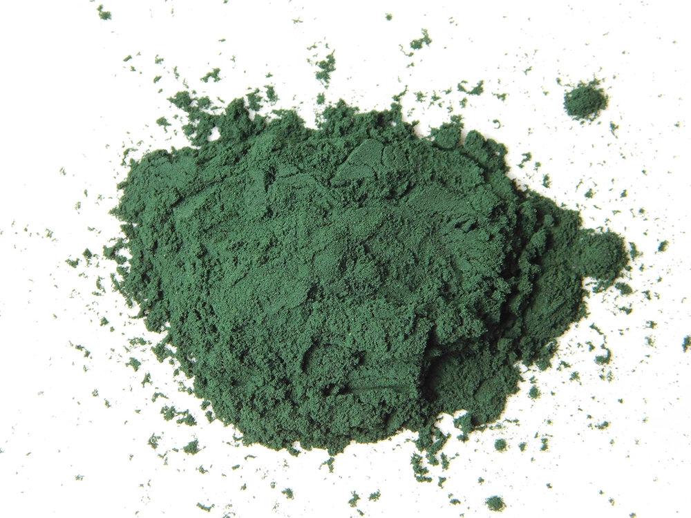 Spirulina-Powder-Organic.jpg