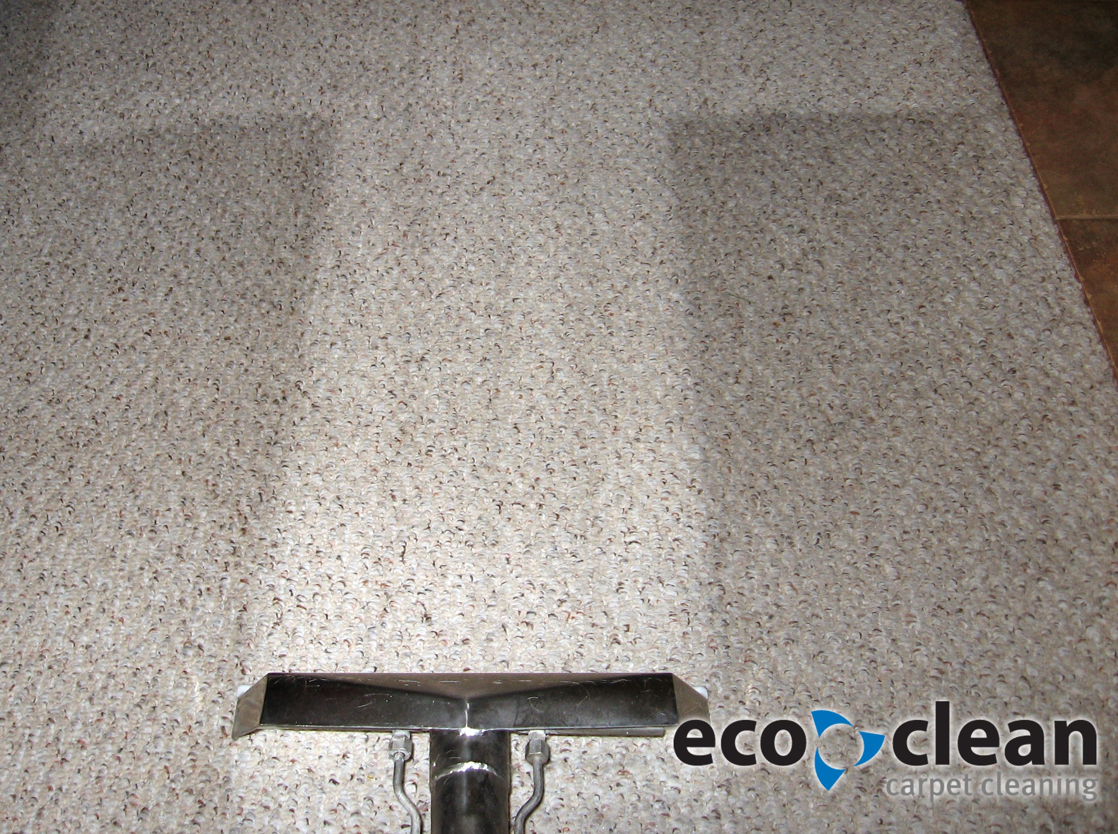 Cleaning Berber is no problem for Eco Clean