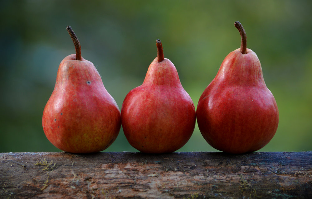 pears - Pears contained several pesticides in relatively high concentrations, including insecticides and fungicides.More than half of conventionally grown pears tested had residues of five or more pesticides.