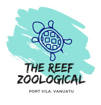 'The Reef' Vanuatu Zoological