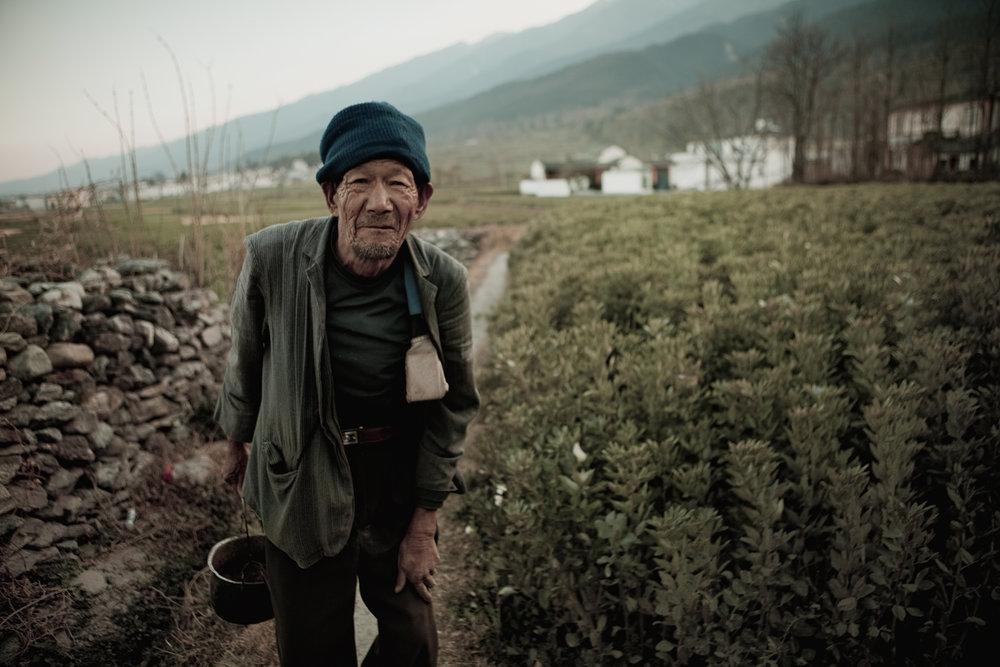Beipang Cun, Yunnan. An old farmer walks through his fields.