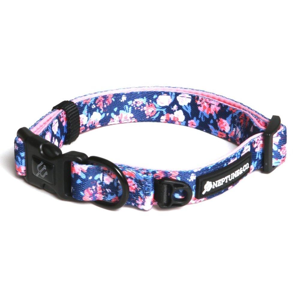 coral-floral-dog-collar-neptunenco-1_1024x1024.jpg