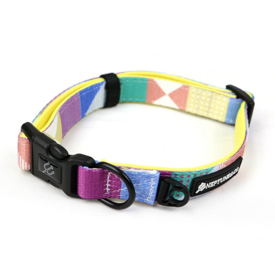 pastel-pooch-summer-collar-neptunenco-2_1024x.png