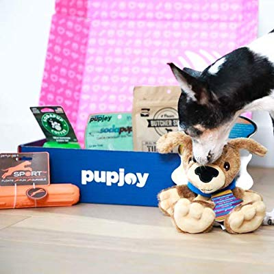Ad:   PupJoy customized dog subscription box delivered monthly . Pup Joy is great for heavy chewers.