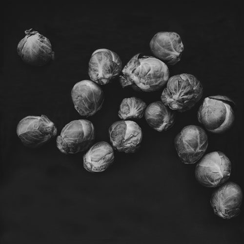 sprouts6983.jpg