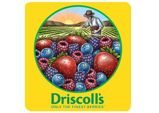 Driscoll_s logo.jpg