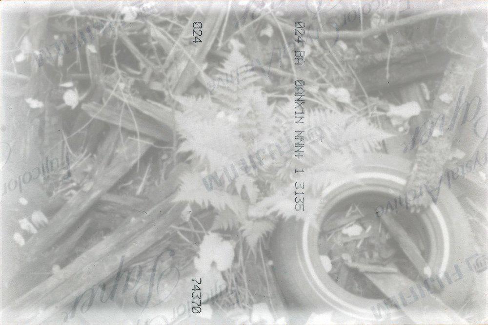 ii.xxii_6.jpg