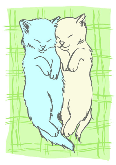 cats-sleeping_WEB.jpg