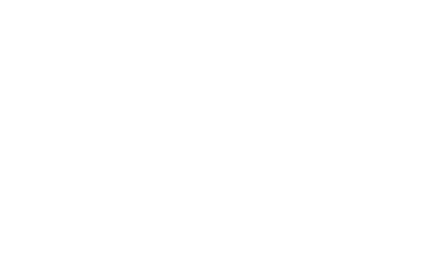 The Bengal Group, Inc.