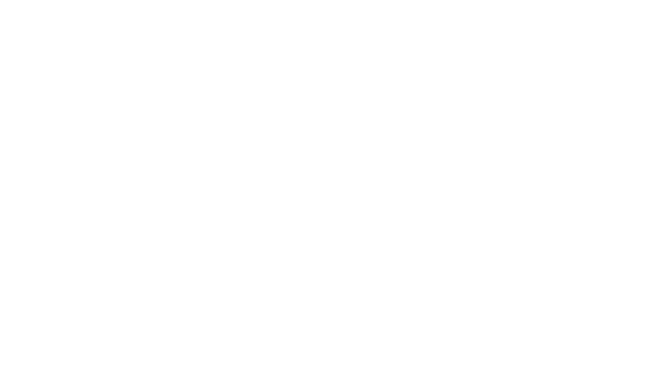 THE SAUNDERS COLLECTIVE