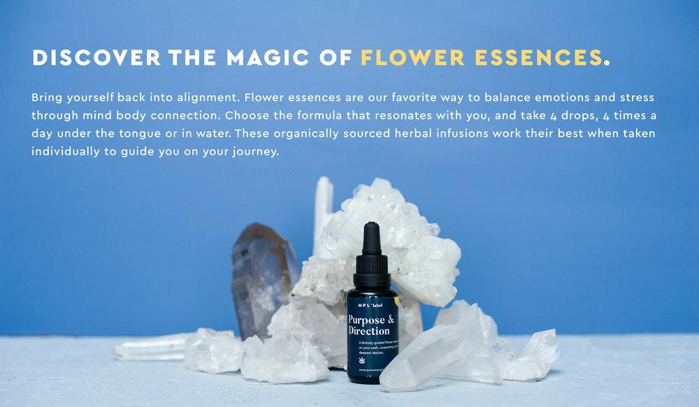 mpl-daily-shop-flower-essences.jpg