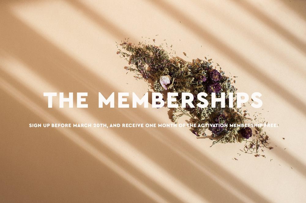 membership-mpl-daily-2.jpg