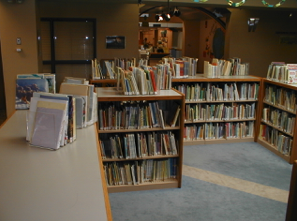 Ames Public Library uses Book Supports