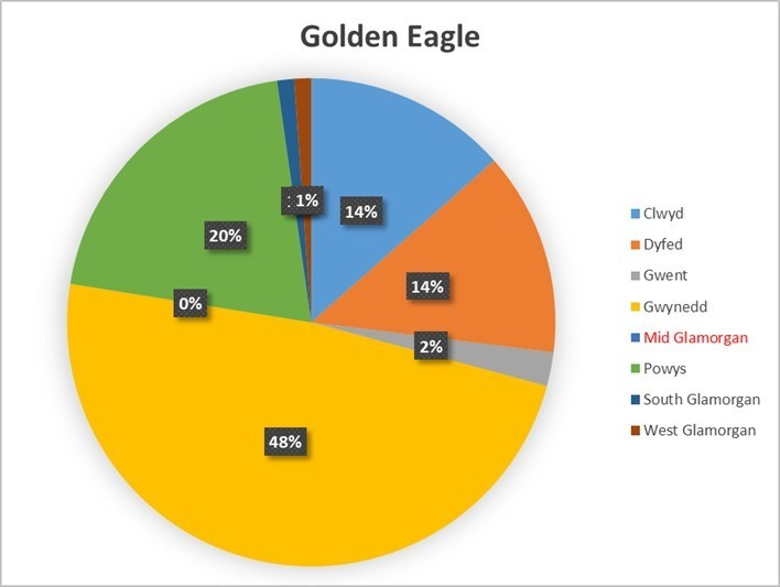 Golden Eagle Pie Chart.jpg