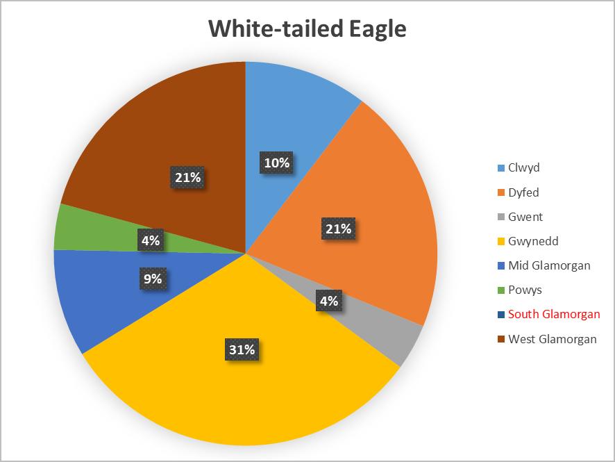 Pie chart WTE.png