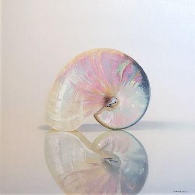 Nautilus Shell, 12x12