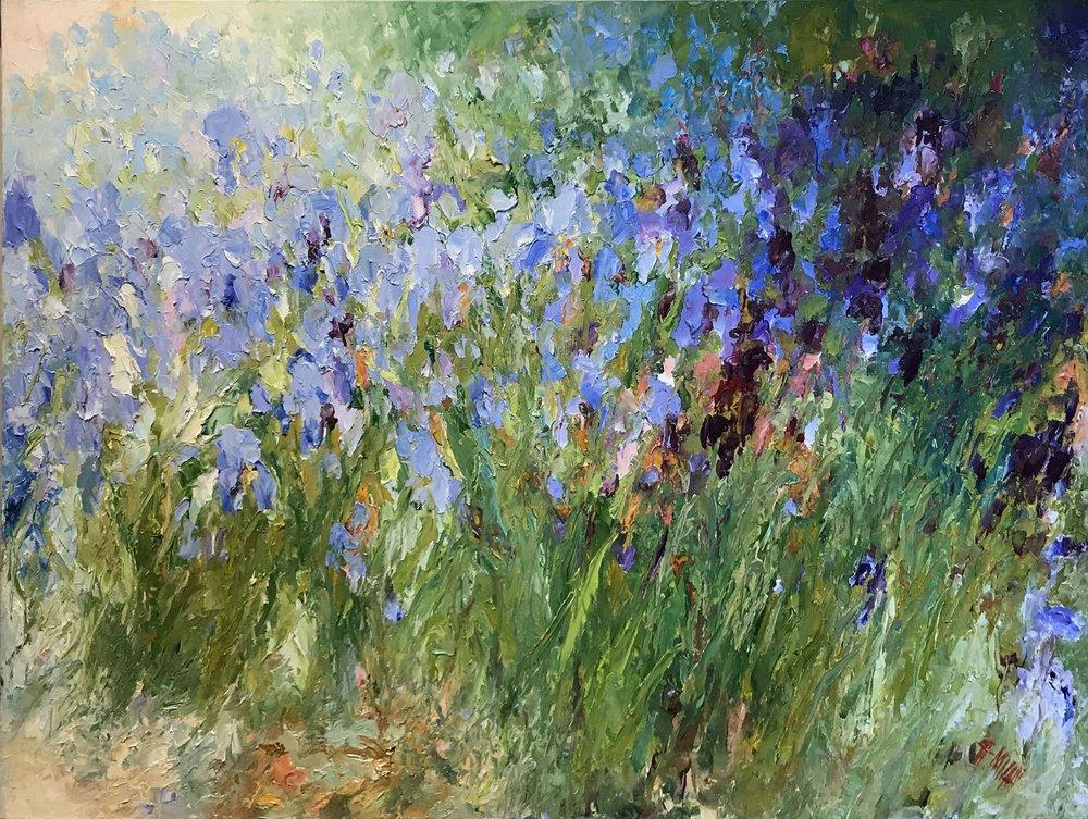 Elegance of Iris, 36x48