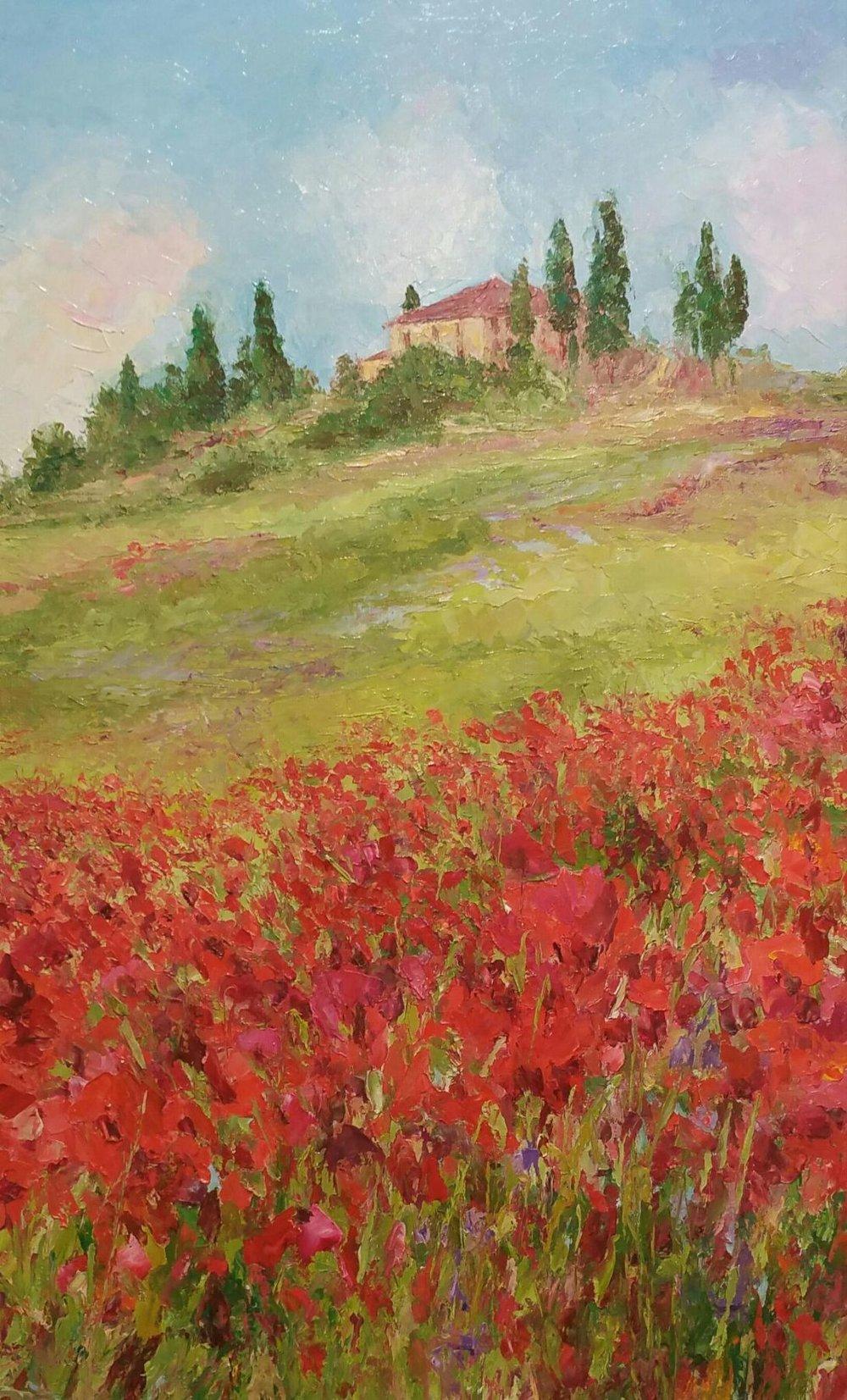 Tuscan Poppy Terrain, 48x30