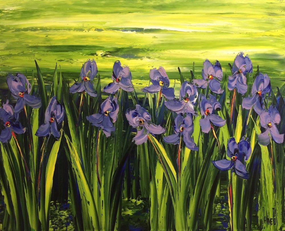 Iris Meadow, 32x39