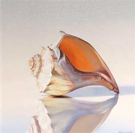 Conch, 12x12