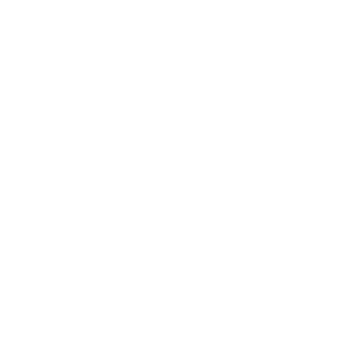 corfo.png