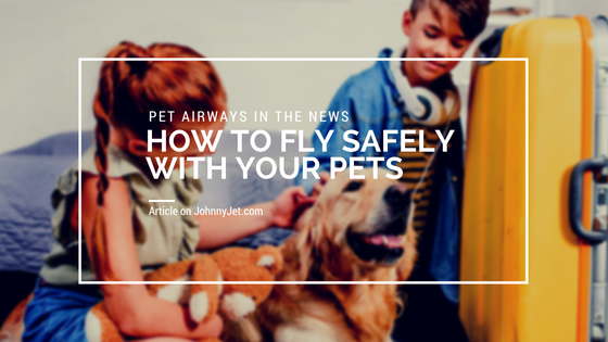 How to Fly Safely With Your Pets (1).png
