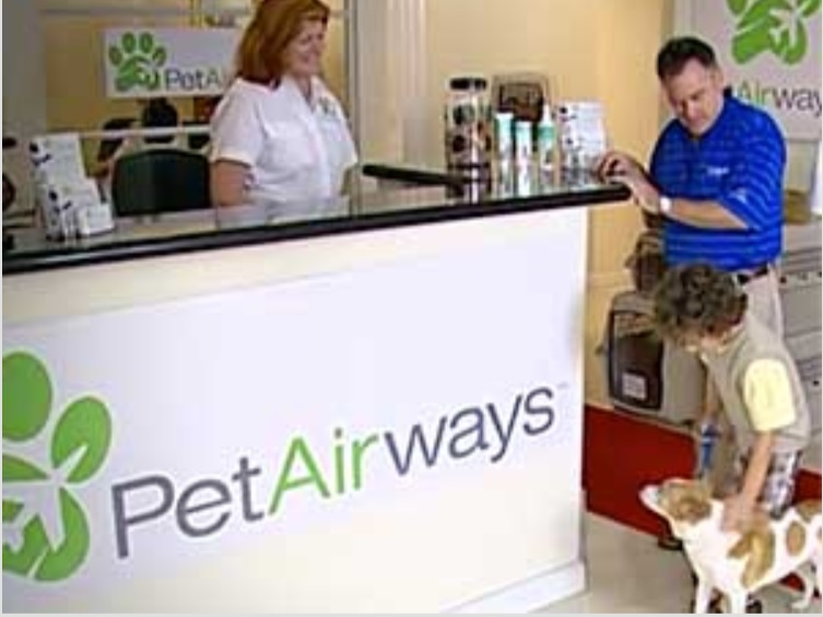 Pets check in at our Pet Lounge.