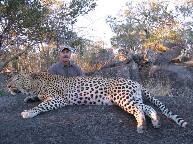 Kasey Leopard.JPG
