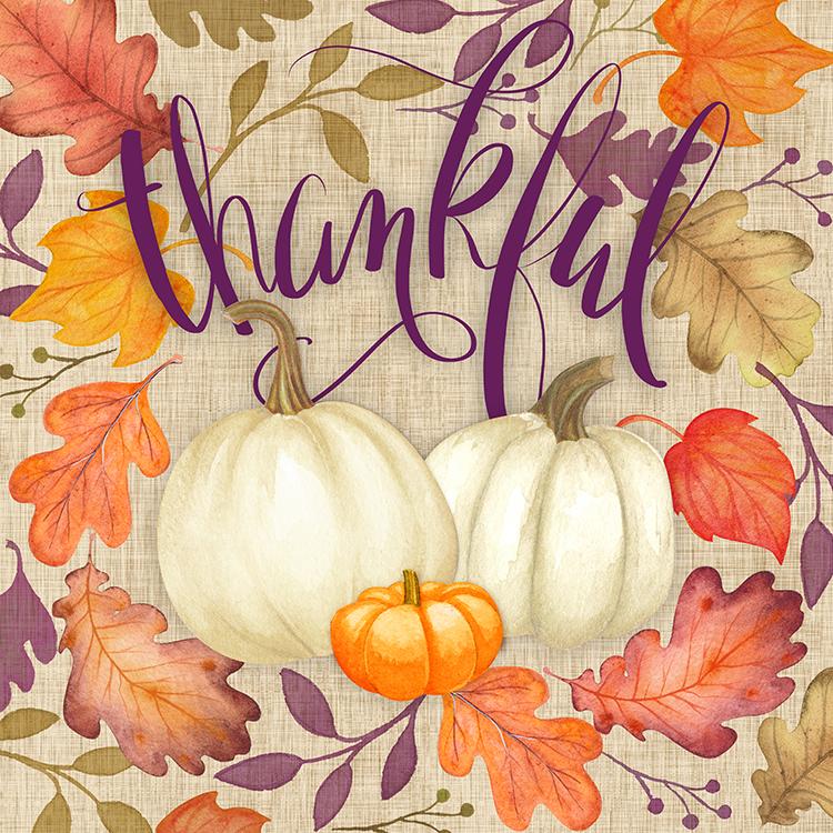Plum Grateful Collection