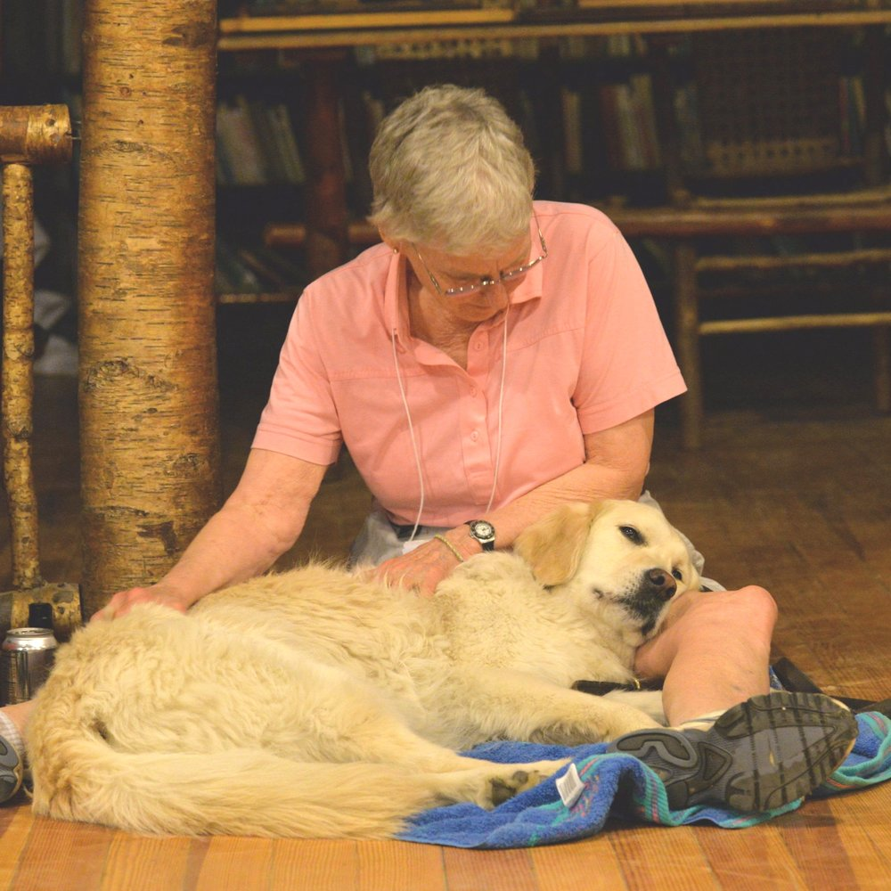 Canine Massage - Learn how to give your dog a relaxing body massage by using basic massage strokes and specific massage techniques. Canine massage offers many physical and emotional benefits for your dog. It relaxes and tones muscles, increases flexibility, relieves discomfort from arthritis, builds the immune system, lowers stress/anxiety and enhances mental focus.