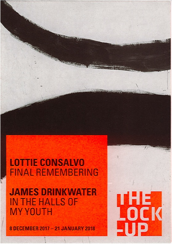 Catalogue essays for Lottie Consalvo,  Final Remembering  & James Drinkwater,  In the Halls of My Youth  at The Lock Up, Newcastle, December 2017 - January 2018.