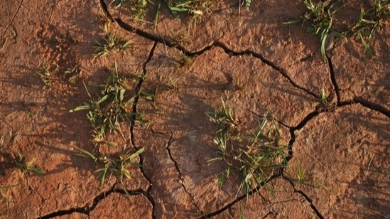 drought_186034.jpg