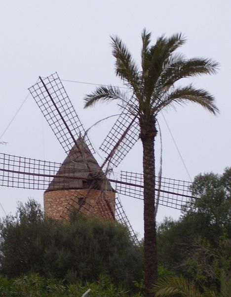 In the low-lying agricultural areas of Mallorca, old wind mills are a very common site, where they are used to pump groundwater into the fields and orchards.