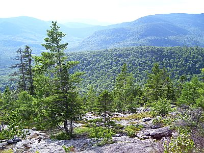 Large stretches of land in New Hampshire and western Maine are protected. They make up the White Mountains National Forest.