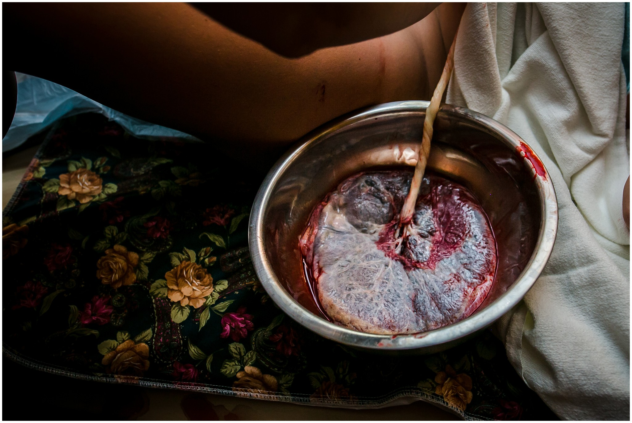 Michigan birth photographer captures placenta