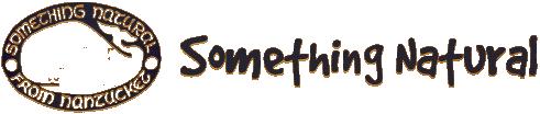 SN wonderwheel_logo.png