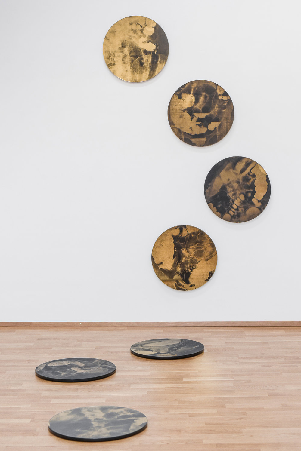 INSTALLATION VIEW of the seven golden pieces, GALLERY ARCC.ART, spring 2018