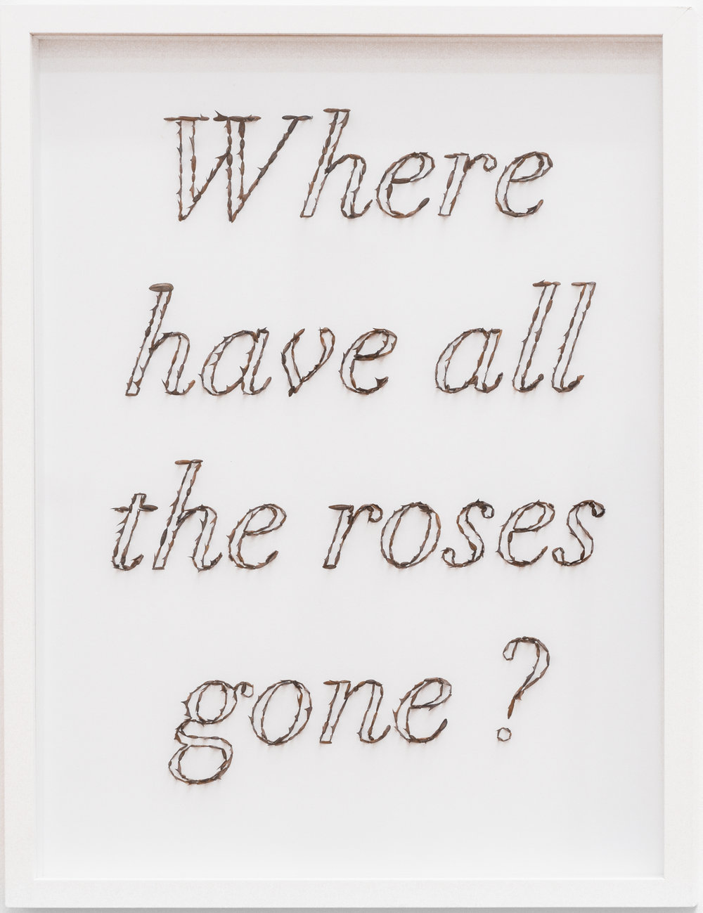 WHERE HAVE ALL THE ROSES GONE? 1264 thorns and acrylic writing on paper 30 x 40 cm, framed, 2018